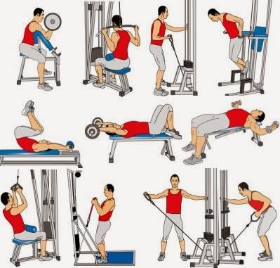 Entrenamiento para principiantes en el gimnasio